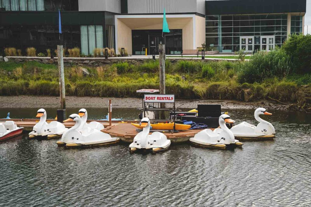 Swan boats on water in Seaside - one of the best places to visit near Cannon Beach