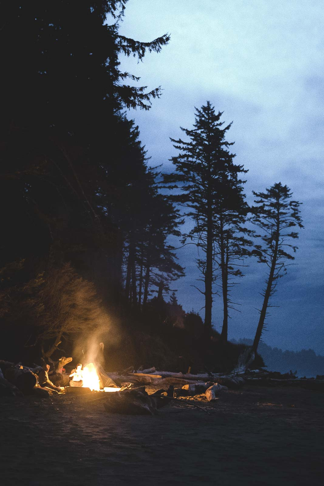 Beach bonfire in dark with trees behind in Lincoln City