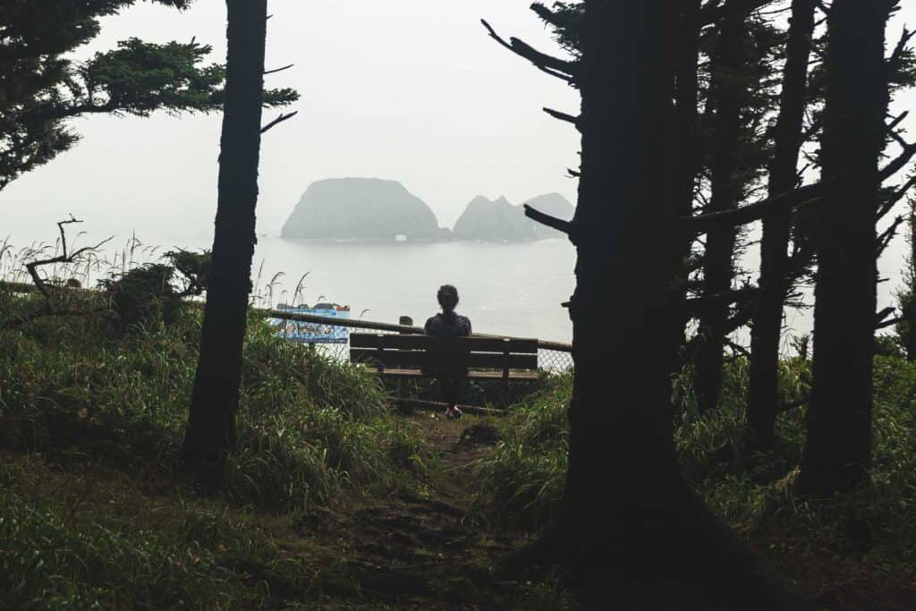 Person sitting on bench and looking out to sea on the Cape Meares Lighthouse loop