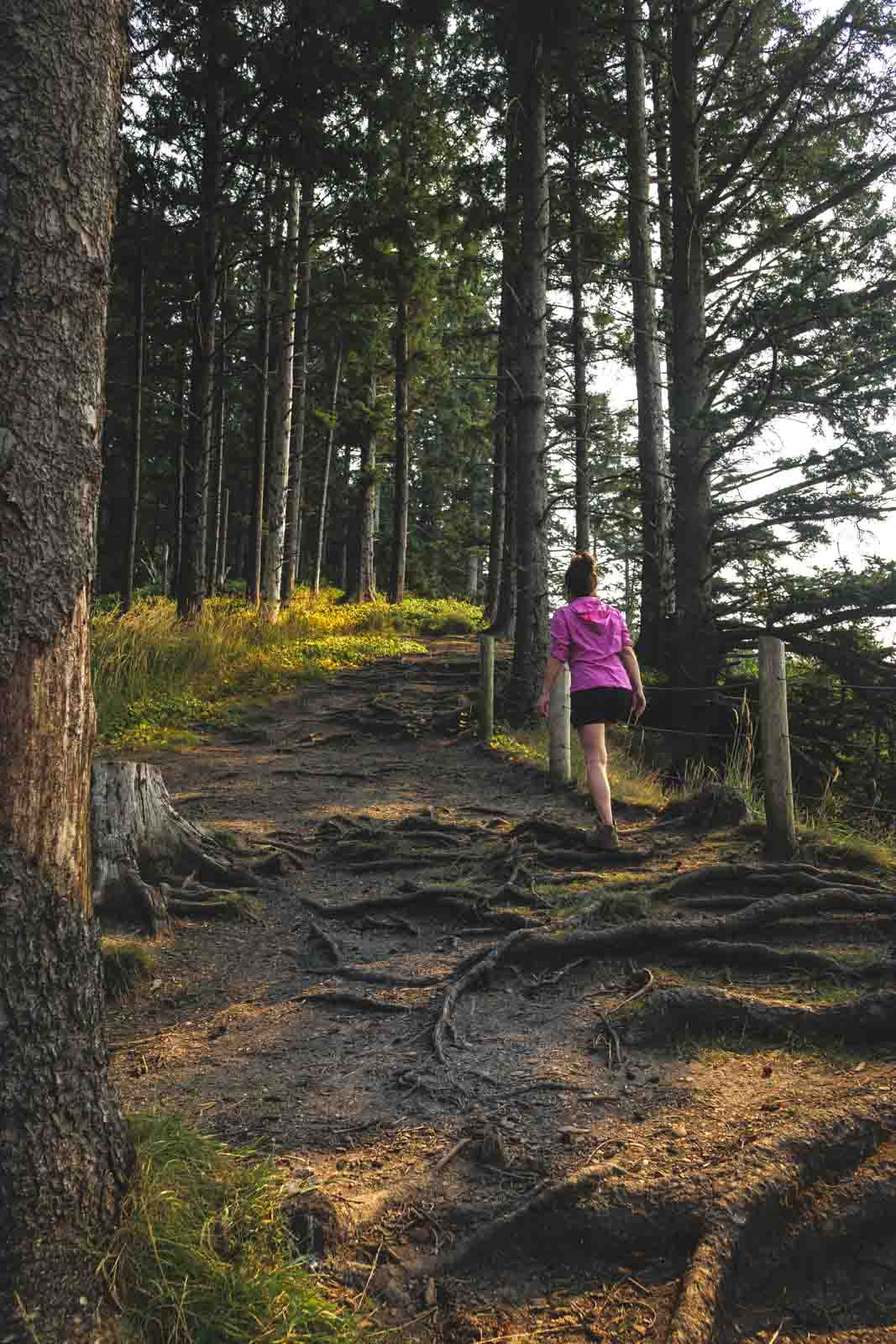 Woman hiking on trail up a hill in the forest in Oswald West State Park