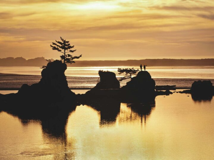 15 Adventurous Things To Do in Lincoln City