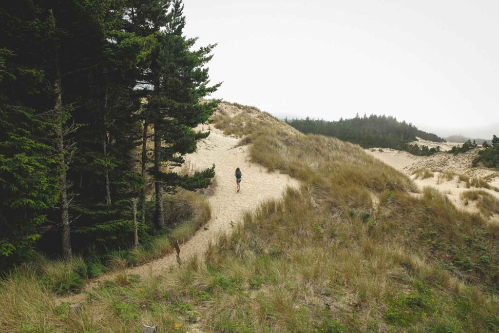 Person walking up path with forest beside them on the Oregon Dunes