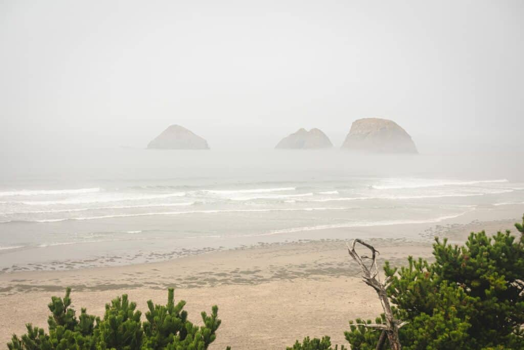 Foggy view of beach, islands and the ocean on the Three Capes Scenic Route