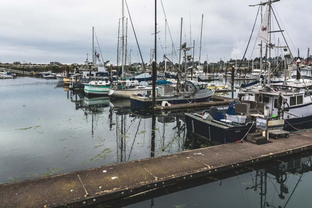 Boats in marina at Brookings near Gold Beach in Oregon