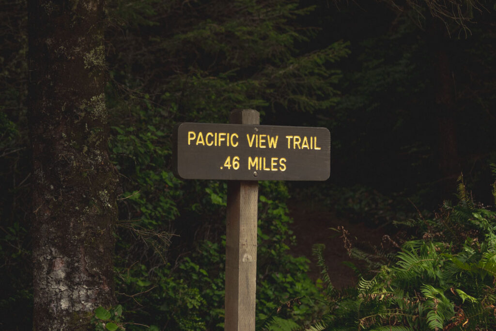 Pacific View hiking trail sign with forest behind it in Cape Blanco State Park