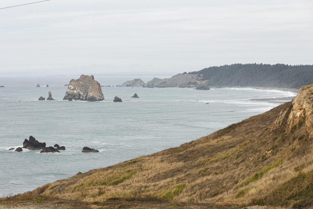View over grassy slope and ocean and headland in the distance on a foggy day in Cape Blanco State Park