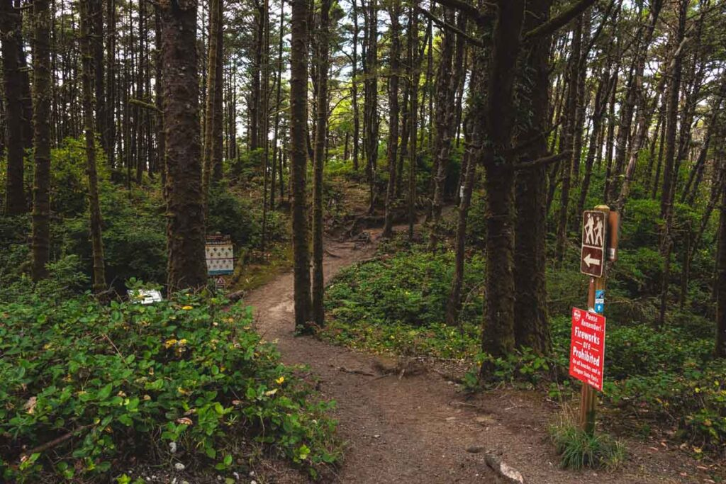 Hiking trail through forest with sign on right hand side at Heceta Head