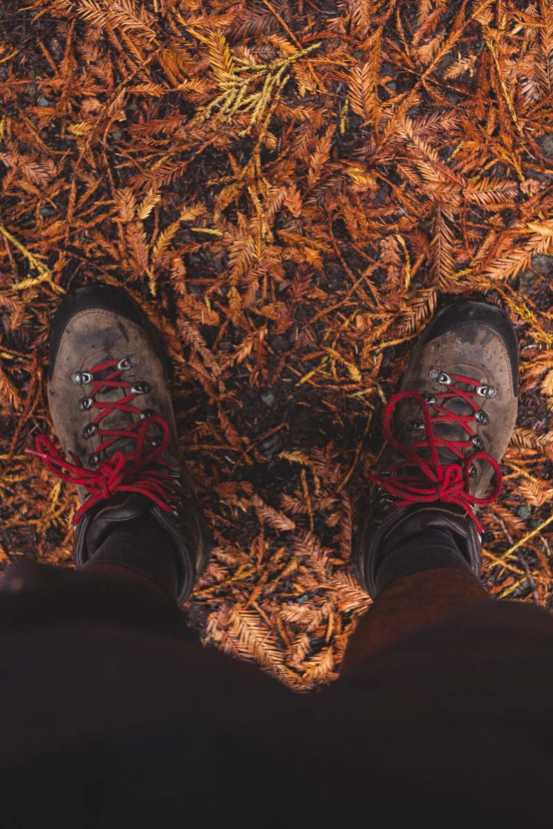 Two feet with hiking boots and bottom of legs from above on dried leaves in the Oregon Redwoods forest