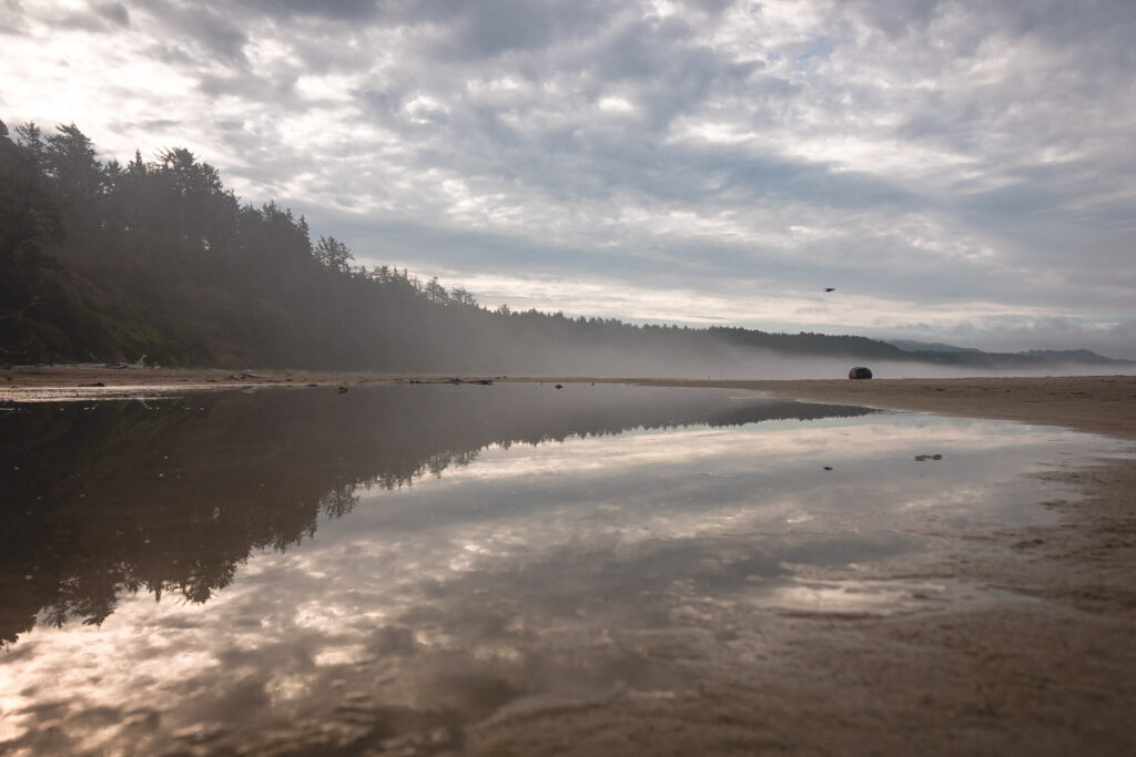 Beach and ocean with forest behind it and reflected in the water by Devils Punch Bowl in Oregon