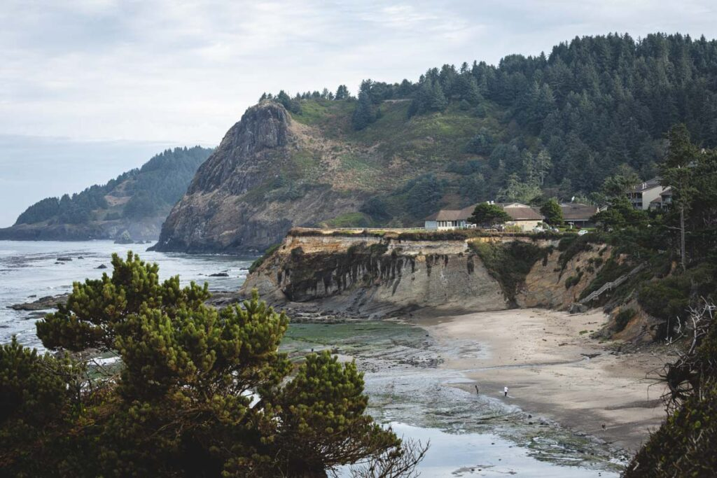 Coastline with beach, sea cliffs, and forested headland around Devils Punch Bowl on a foggy day on the Oregon Coast