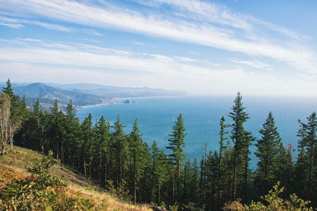 View of the ocean over the forest on the Humbug Mountain Loop Trail viewpoint