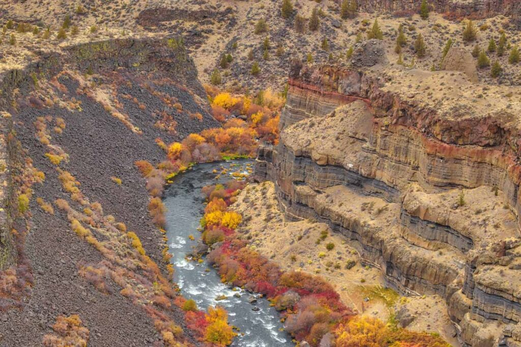 Autumn trees along Deschutes River Canyon in Cove Palisades State Park